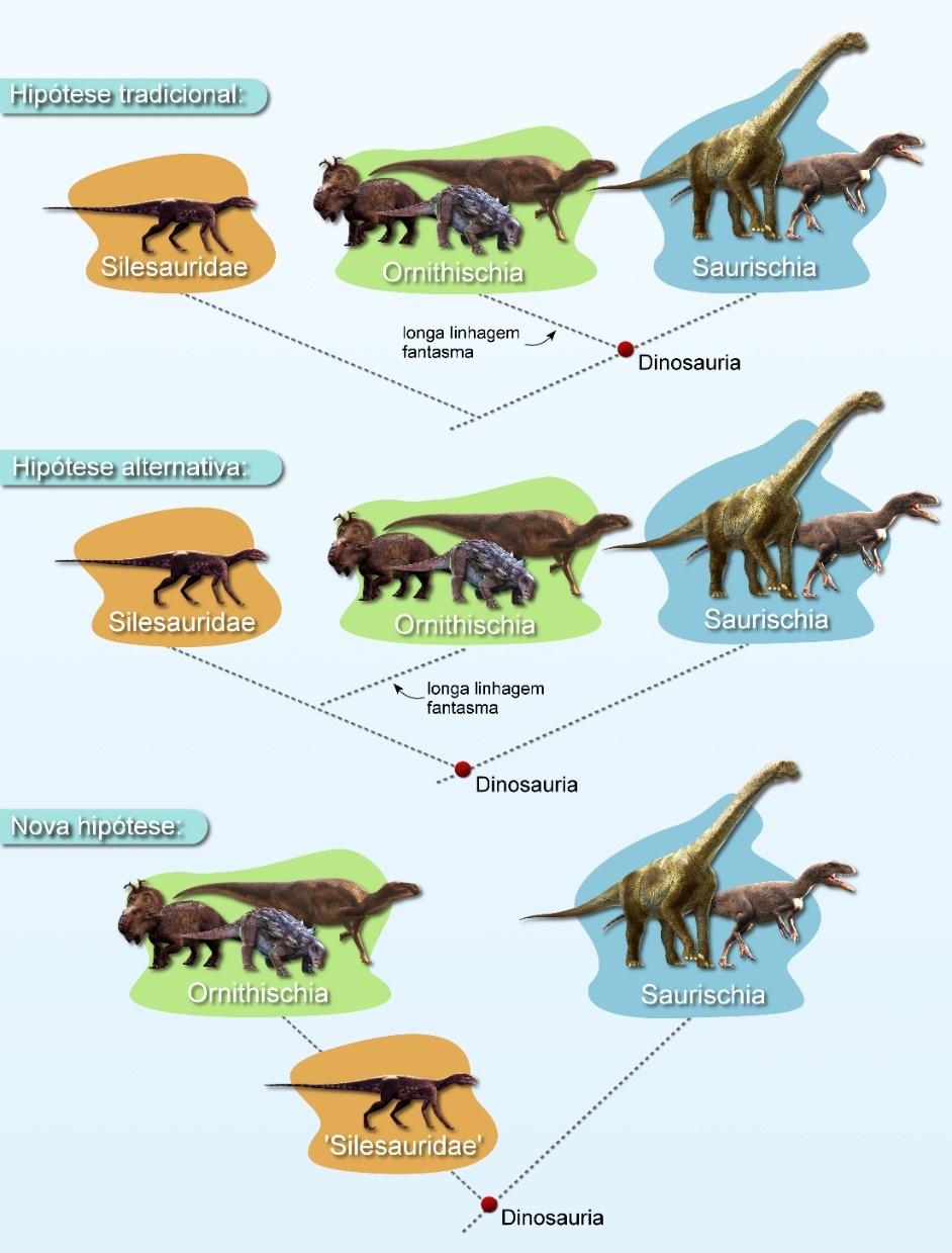 Estudo da UFSM sugere um rearranjo na árvore genealógica dos dinossauros