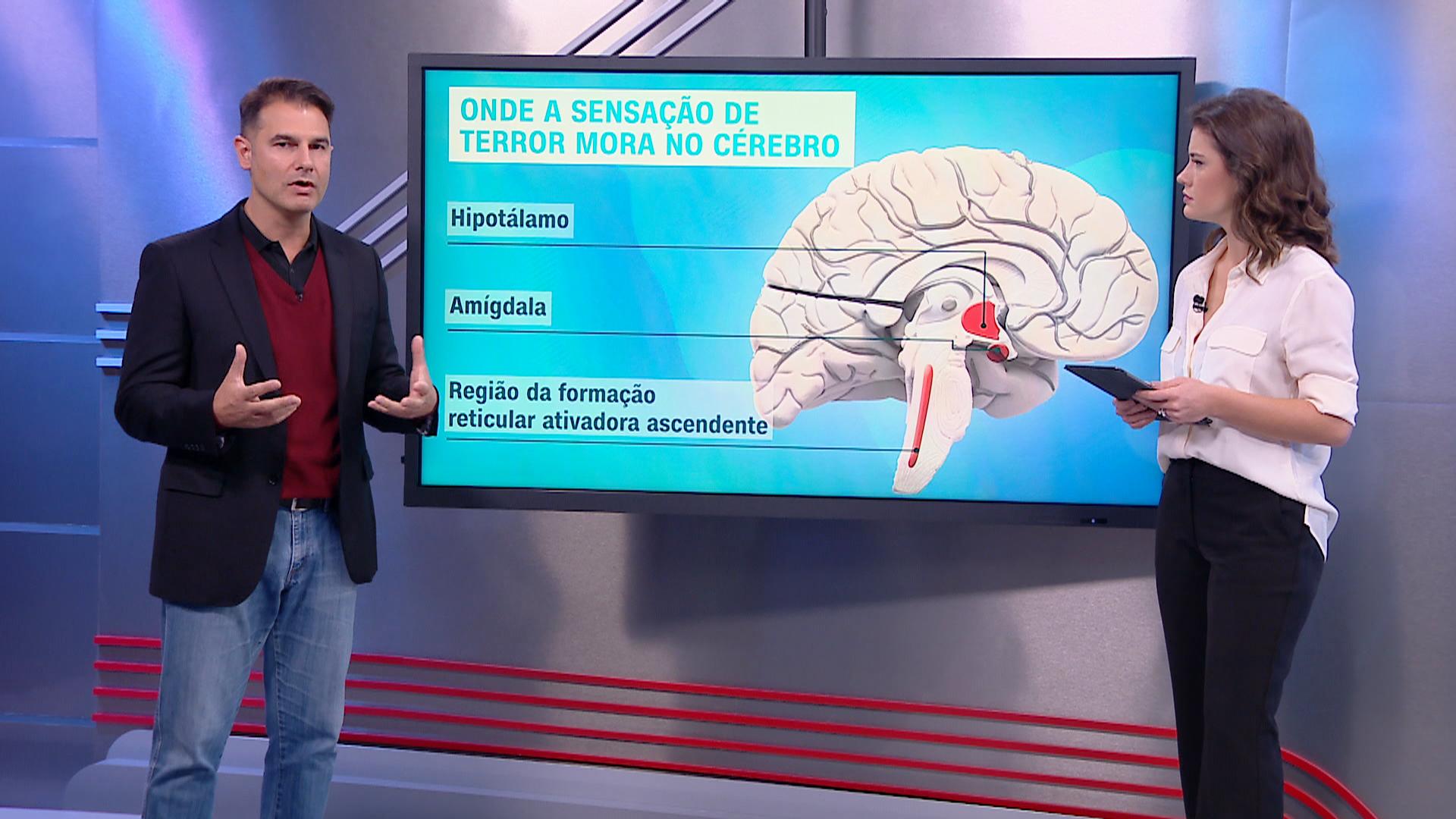 Correspondente Médico: o neurocirurgião Fernando Gomes fala sobre o comportament