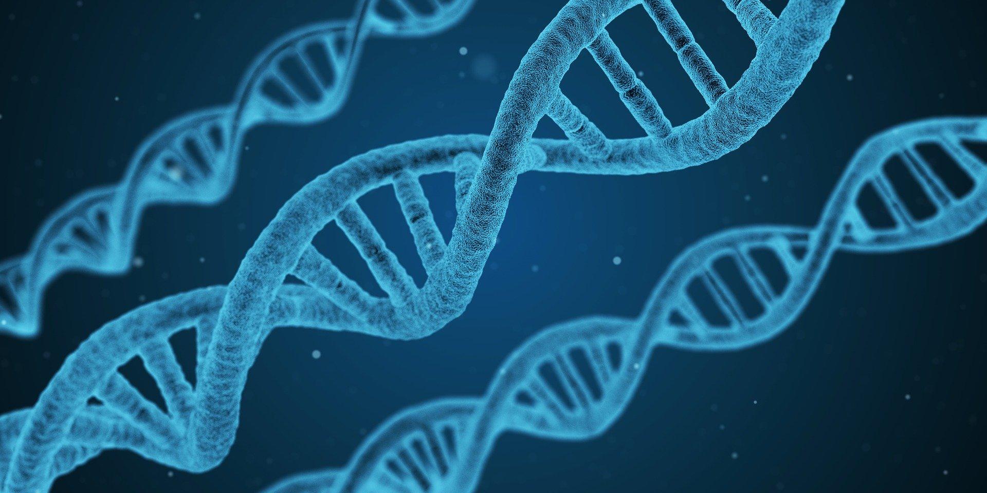 Representação gráfica do DNA