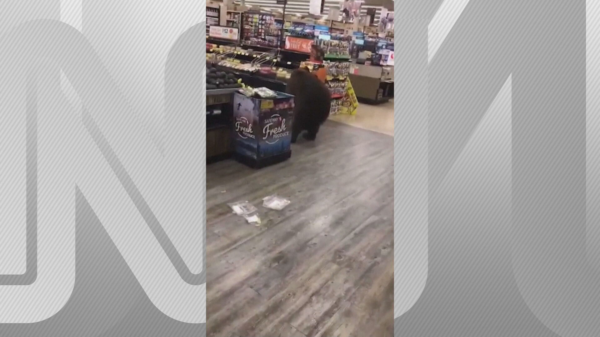 O urso mexe em mercadorias durante flagra em um supermercado na Califórnia, nos