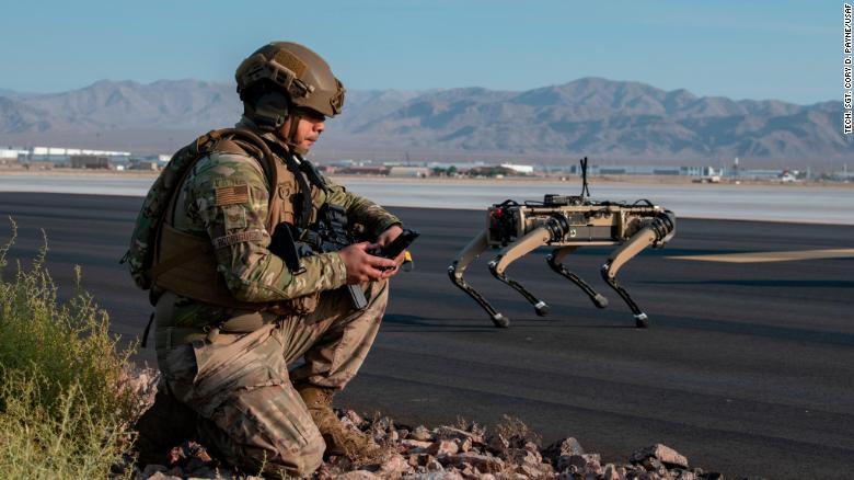 Soldado americano e cachorro
