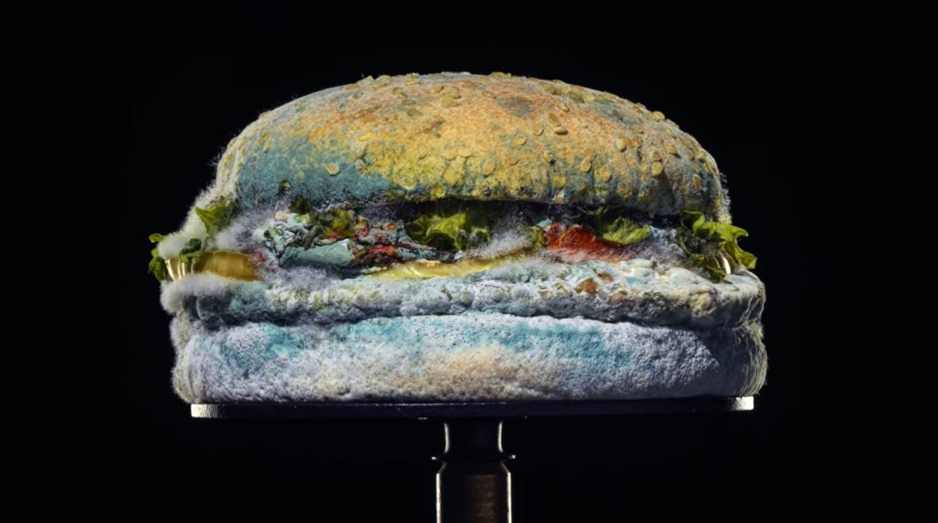 Hamburguer Mofado Burger King