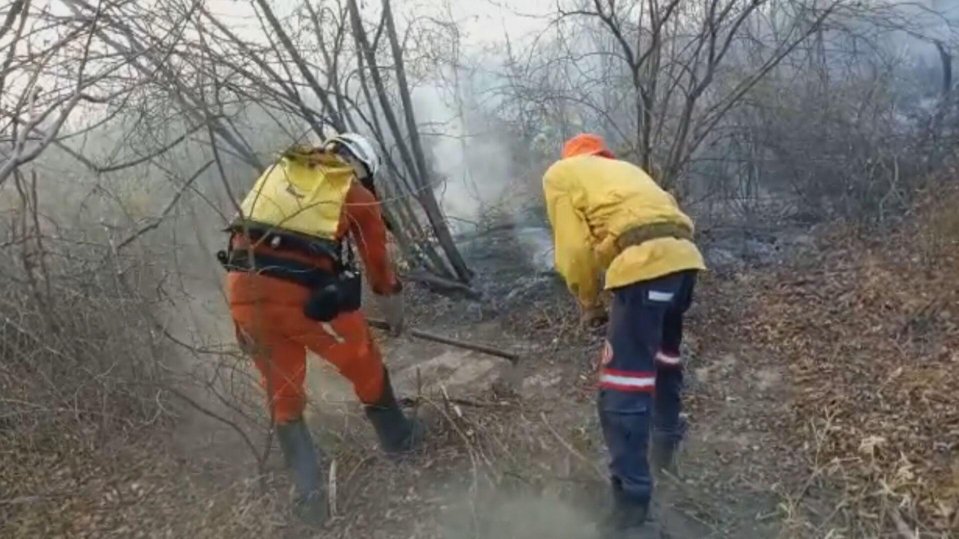 Incêndio atinge vegetação em Barra, no interior da Bahia