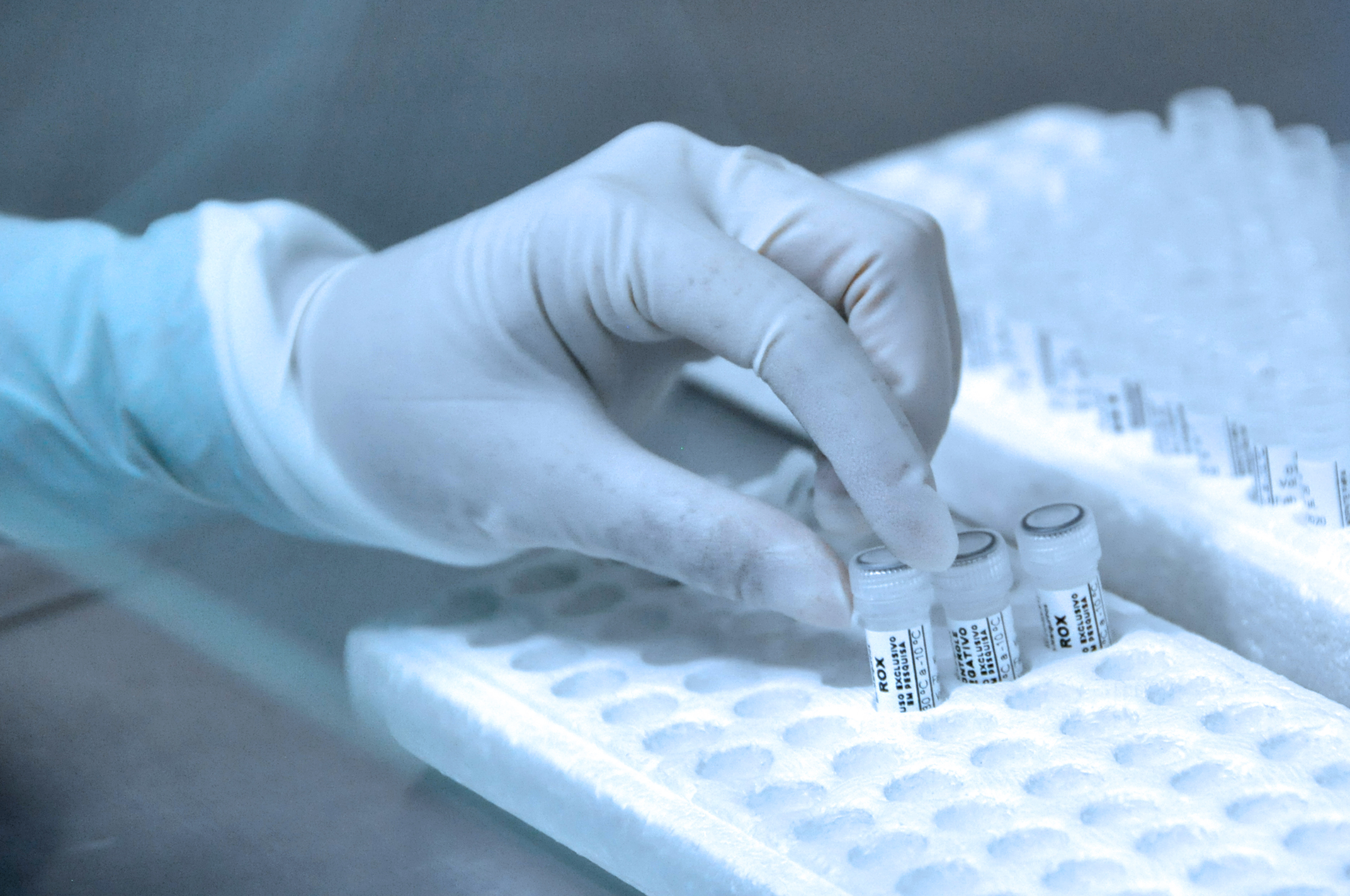 Testes para diagnóstico da Covid-19