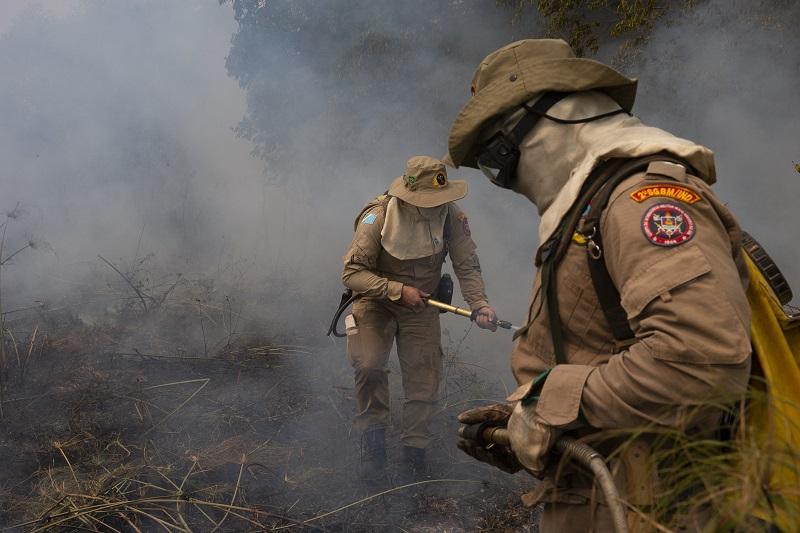 Bombeiros trabalham para conter as chamas de incêndio florestal no Pantanal