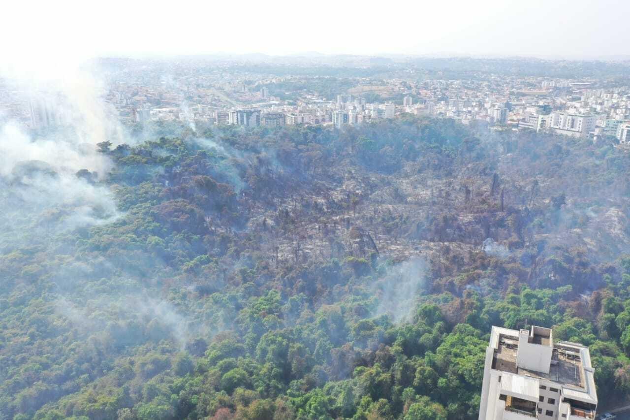 Área consumida pelo fogo no Parque Municipal Ursulina de Andrade Mello