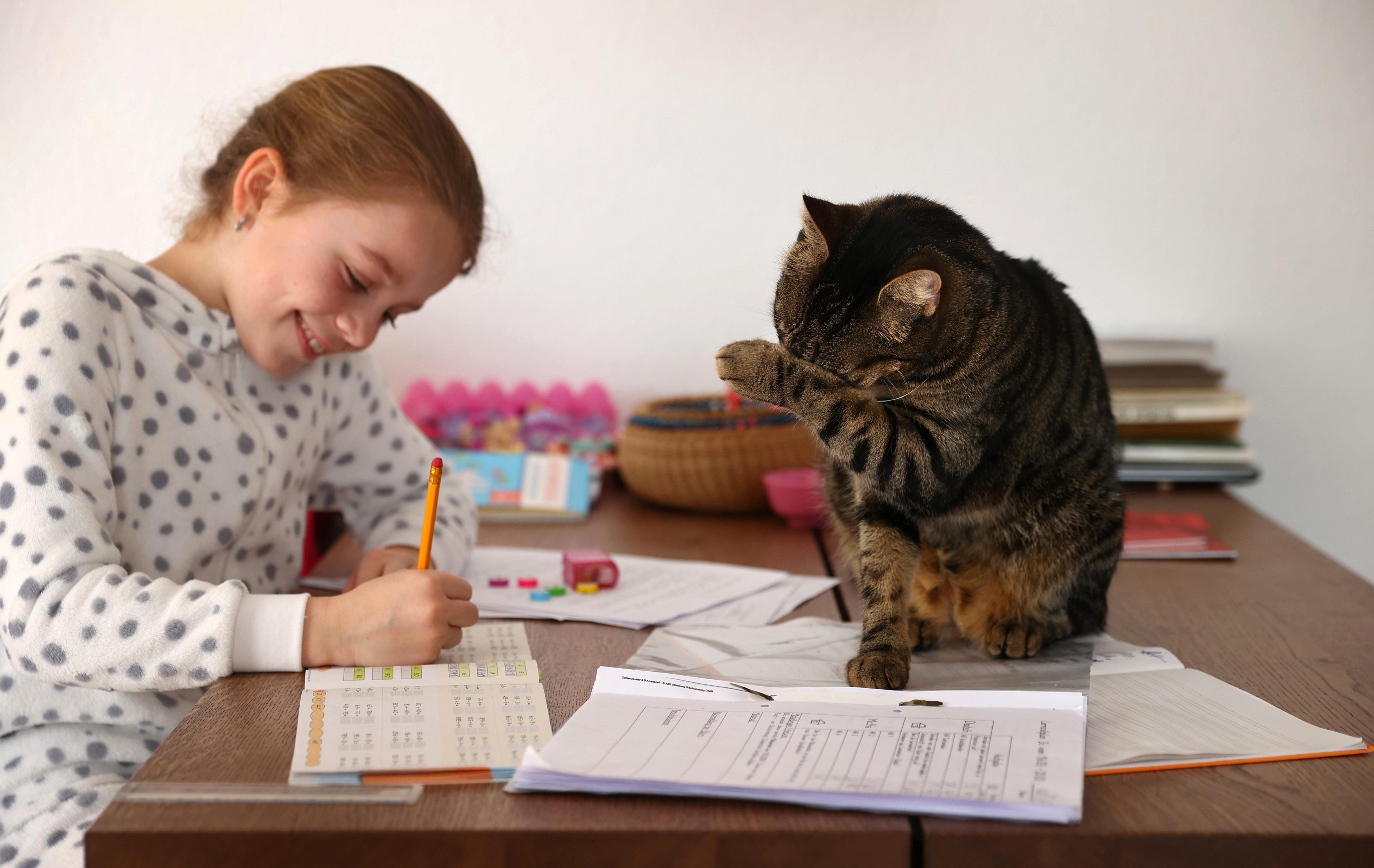 Criança em casa para evitar transmissão do coronavírus acompanhada de gato