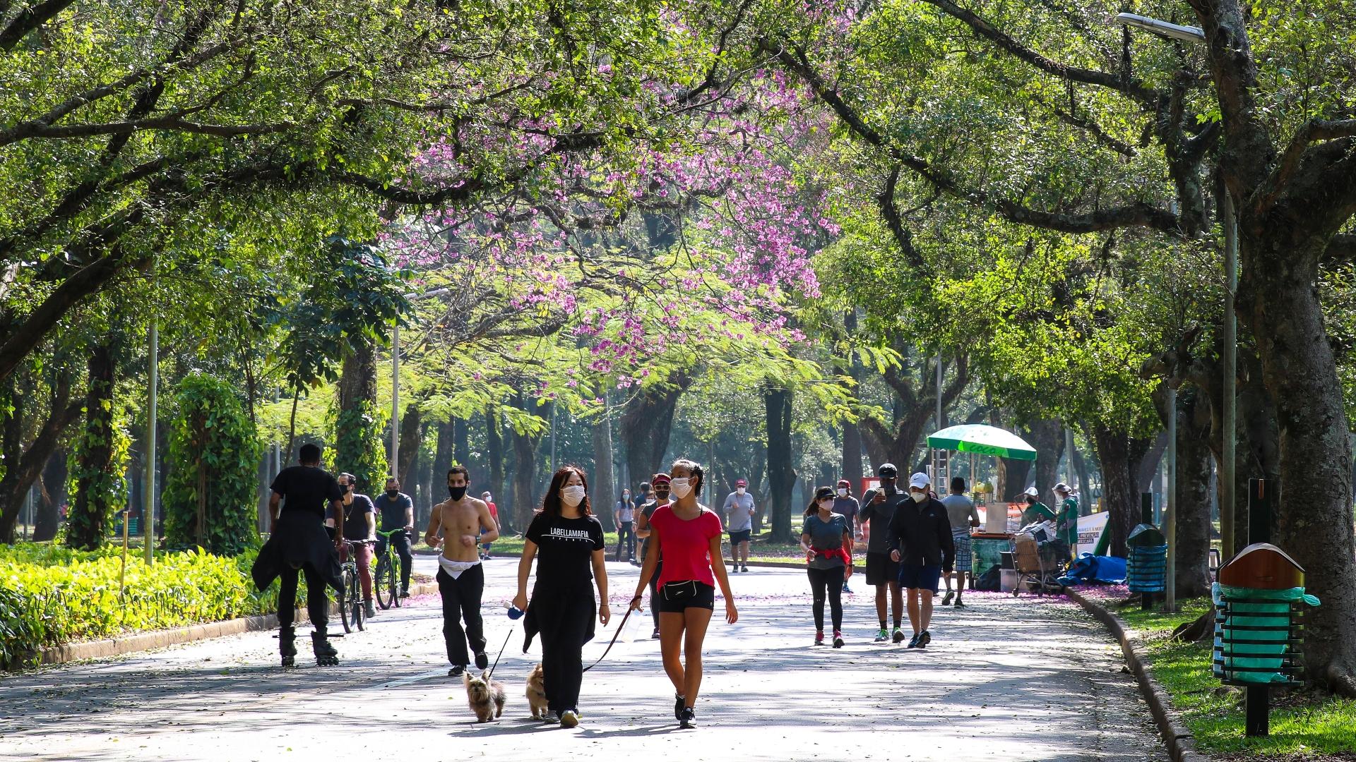 Pessoas fazem exercício no Parque do Ibirapuera durante a pandemia
