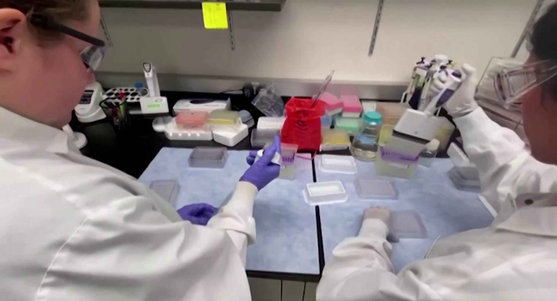 OMS acompanha 70 vacinas que podem ser efetivas contra a COVID-19