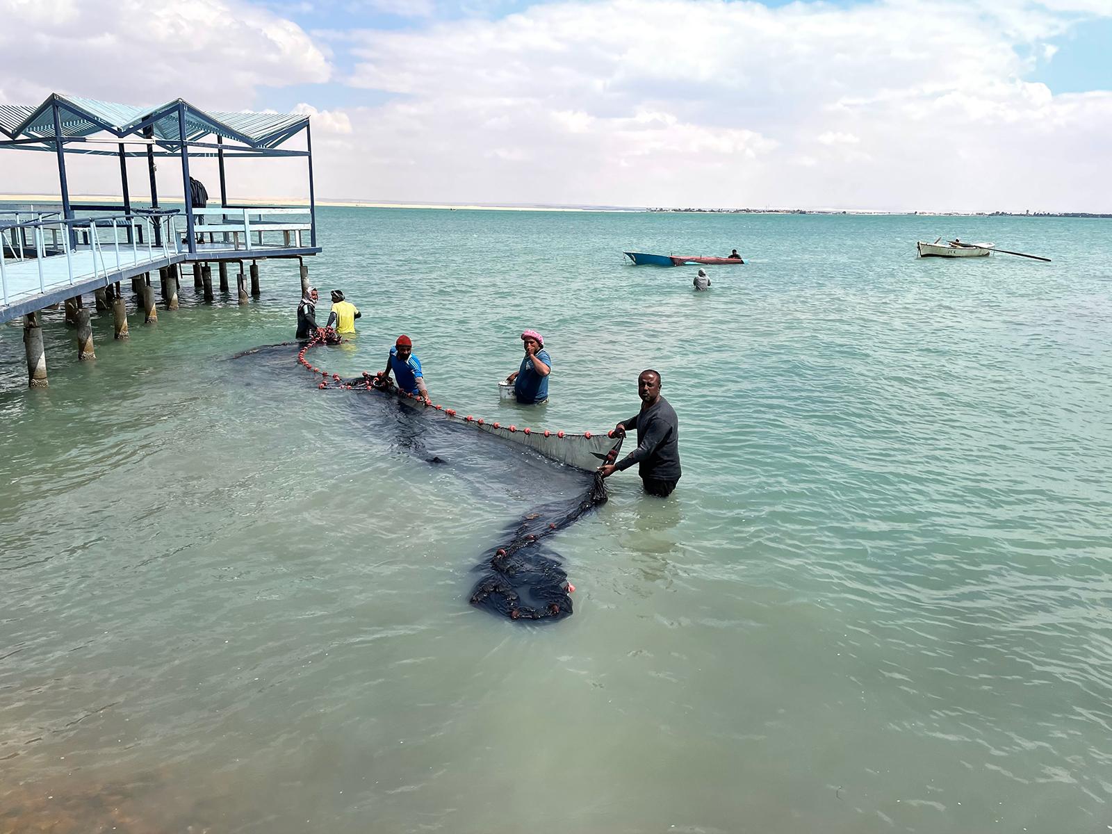 Reda El Sayed e outros pescadores jogam rede nos lagos entre Ismailia e Suez