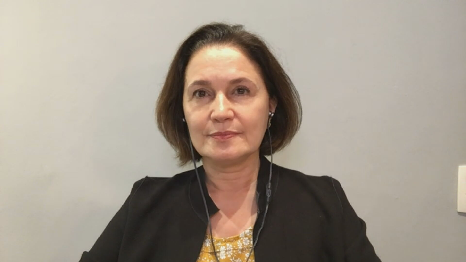 Presidente do CEBDS Marina Grossi fala sobre Cúpula de Líderes sobre o Clima