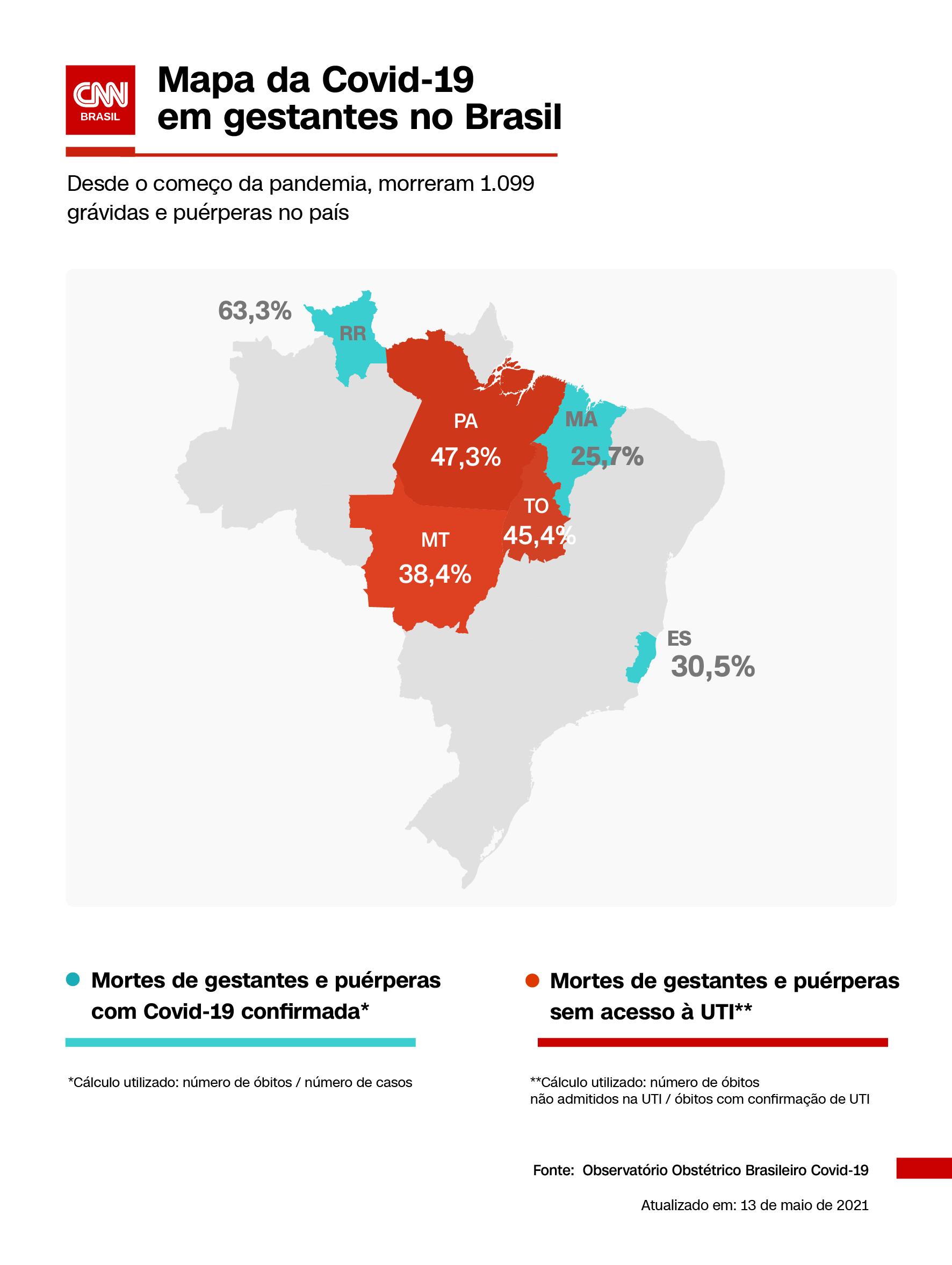 Mapeamento da Covid-19 em gestantes no Brasil