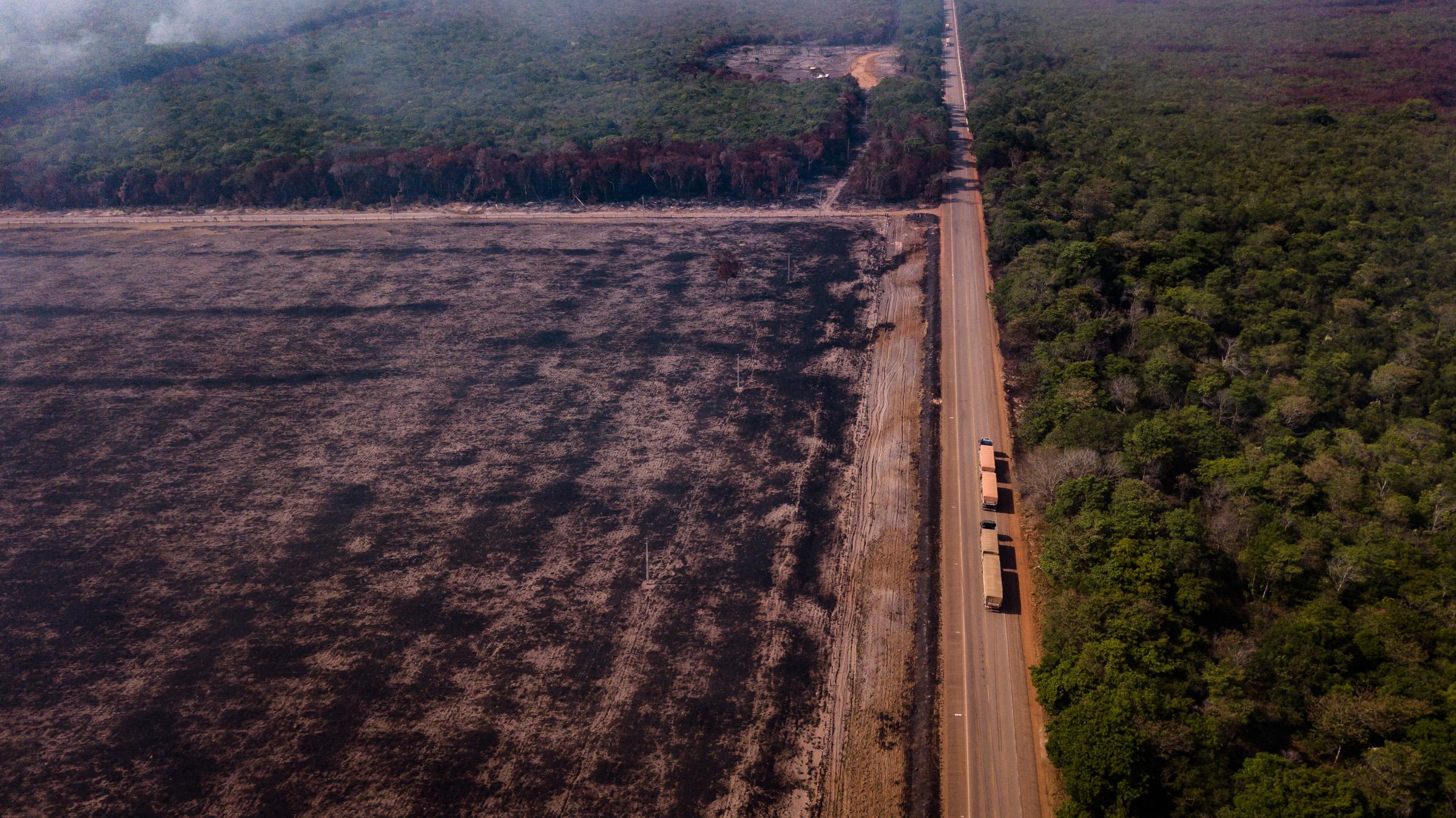 Área da Floresta Amazônica queimada às margens da BR-163 no Pará