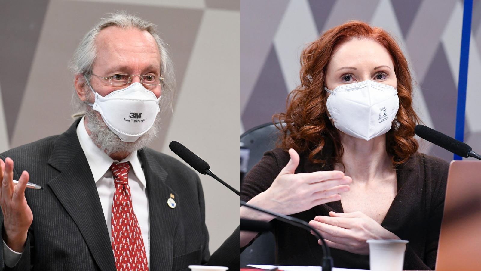 Os cientistas Claudio Maierovitch e Natalia Pasternak durante a CPI da Pandemia