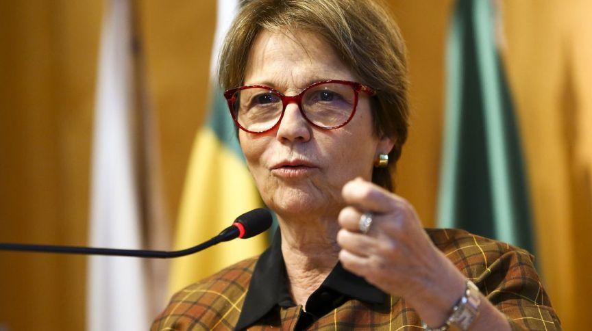 A ministra da Agricultura, Tereza Cristina: em documento, ministério ressalta imposição de medidas protecionistas em países por conta do coronavírus