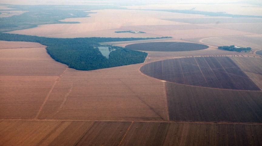 Vista aérea de plantação de soja no Mato Grosso 09/09/2011 REUTERS/Paulo Whitaker