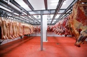 Segundo a companhia, as vendas de carne bovina para China e Hong Kong saltaram 145% na comparação com o mesmo trimestre de 2019