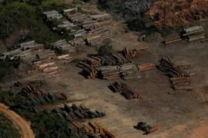 Brasil chegará à COP26 em uma situação incômoda, afirma pesquisador