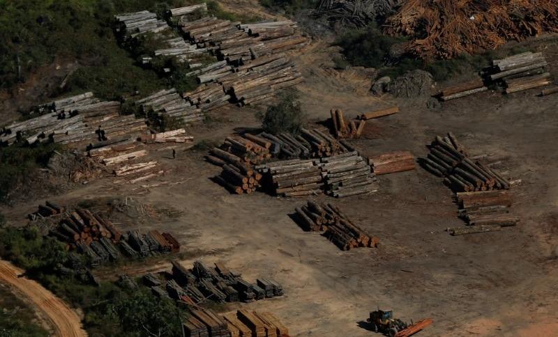 Toras de madeira vistas durante operação do Ibama de combate ao desmatamento ilegal em Apuí, no Amazonas 27/07/2017 REUTERS/Bruno Kelly