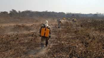 O instituto já tinha ameaçado paralisar atividades de combate ao desmatamento em agosto, por falta de recursos