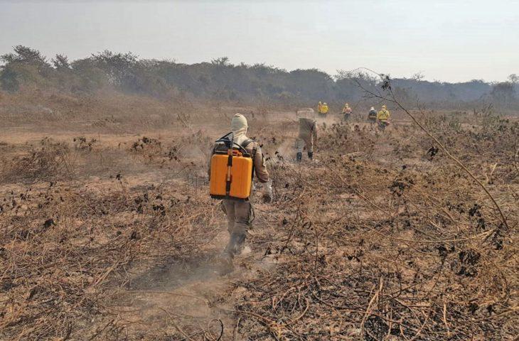 Bombeiros trabalham contra incêndios no Pantanal do Mato Grosso do Sul