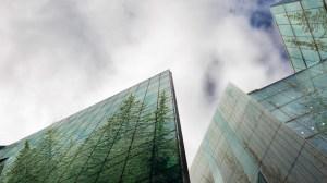 Empresas sem estratégias sustentáveis ficarão para trás, diz especialista