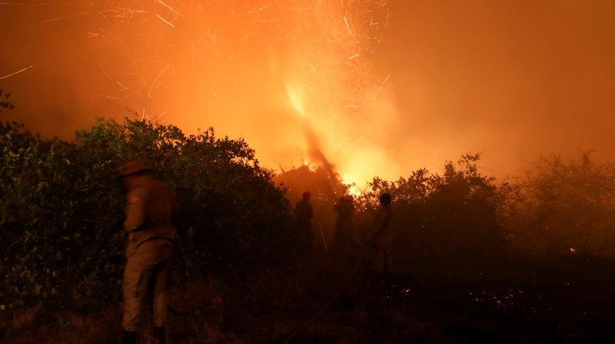 Bombeiros combatem chamas no Pantanal