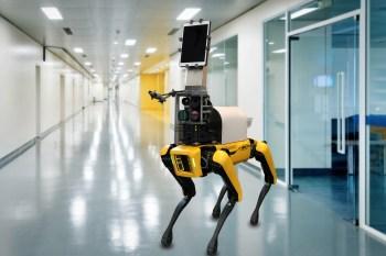 Robô com aparência de cachorro deve ajudar profissionais da saúde no combate à pandemia