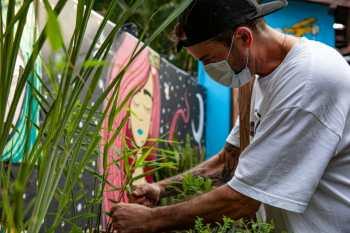 Lenda do skate e renomado chef venderão produtos naturais na Farmaleaf como alternativa aos opioides e tem até um ex-CEO da Bayer, Theo Van der Loo, como sócio