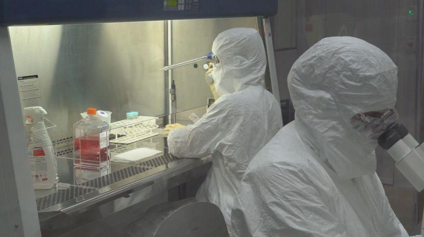 Pesquisadores da Coronavac, a vacina chinesa, fazem procedimentos em laboratório