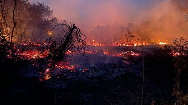 Incêndios no Pantanal já atingem 2,3 milhões de hectares