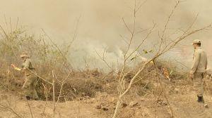 Sudeste tem o maior número de queimadas no mês de setembro em 10 anos, aponta Inpe