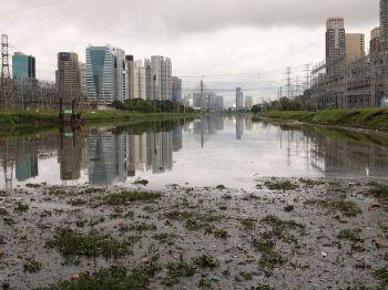 Até a metade do mês de setembro, número de reclamações foi de 526; calor e tempo seco acentuaram aparecimento de pernilongos e mosquitos