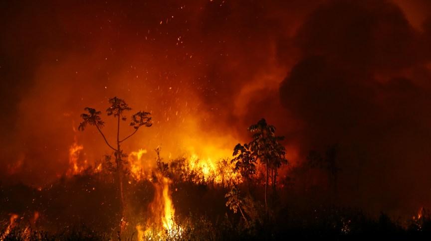 Fumaça e chamas de queimada no Pantanal, no Mato Grosso