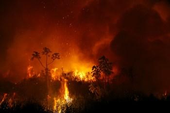 Tropas participam de 17 ações na Amazônia Legal. Brasil registrou piora nos registros de fogo em agosto