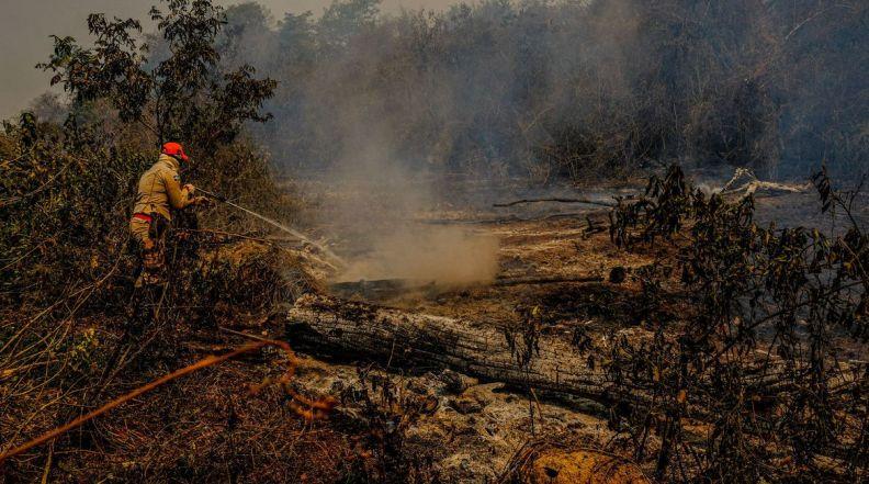 Agente combate foco de incêndio no Pantanal