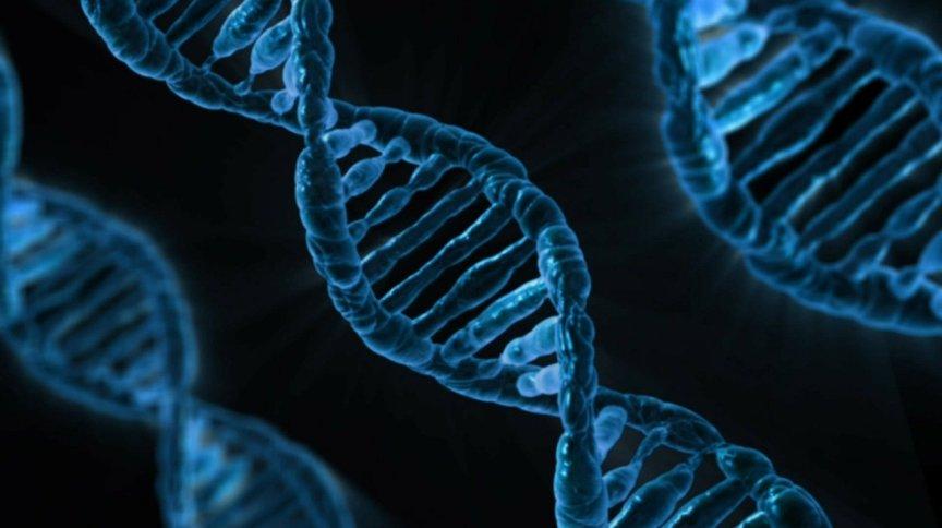 Ilustração de cadeia de DNA