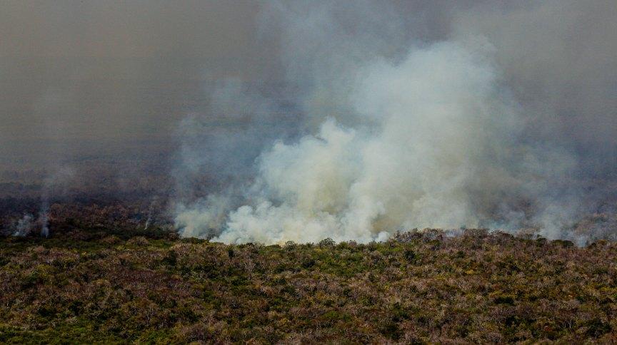 Incêndios batem recorde na região do Pantanal