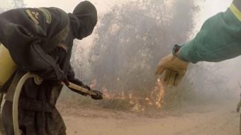 Neste domingo (25), vamos conhecer o trabalho dos brigadistas no Pantanal e a fé envolvente da Bahia