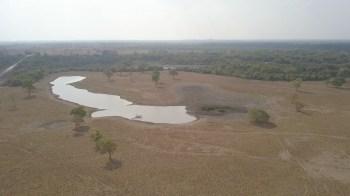 Sem os rios e o clima úmido, o Pantanal não existiria, e a preservação da natureza pode determinar o futuro do bioma