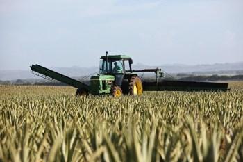 A medida atende uma lei federal que liberou tratores de emplacamento e do licenciamento, mas tornou obrigatório o registro no Ministério da Agricultura