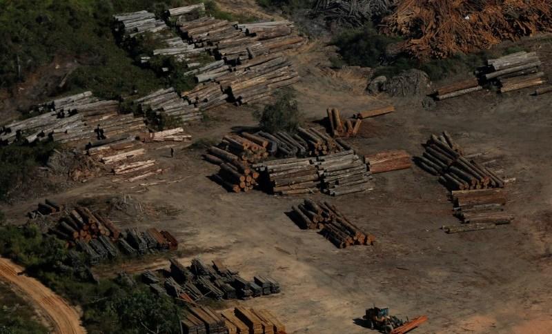 Toras de madeira vistas durante operação do Ibama de combate ao desmatamento ilegal em Apuí, no Amazonas