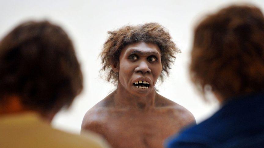 Diversas representações de como teriam sido os Neandertais foram feitas a partir das ossadas encontradas