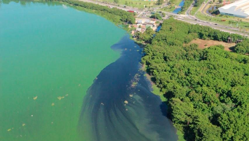 Mancha causada por cianobactérias se aproxima da orla da Barra da Tijuca