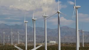 Em meio à 'safra dos ventos', eólica compensa parte das perdas de hidrelétricas