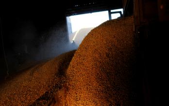 Taxa de juros está entre 3% e 7,5%, dependendo do tamanho do produtor rural