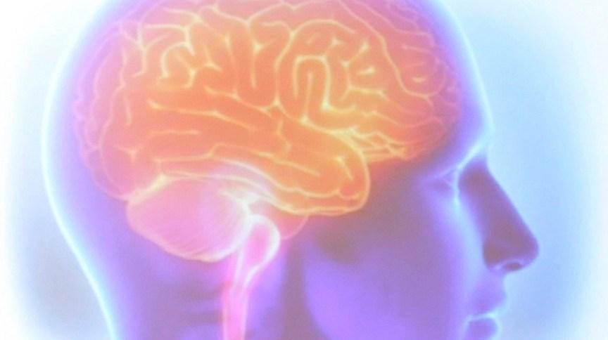 Cérebro humano: será que um cérebro é escravo de si mesmo ou existe uma oportunidade para o livre-arbítrio?