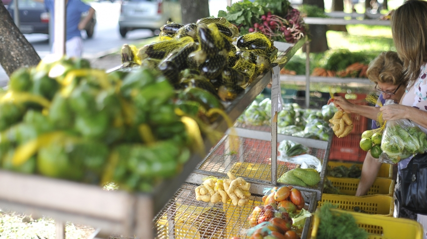 Pesquisa do IBGE sobre hábitos de consumo identificou que 49,5% das calorias totais consumidas pelos brasileiros são de alimentos in natura