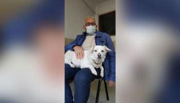 Mesmo levada para casa algumas vezes, a cachorrinha Boncuk dava um jeito de retornar à frente do hospital em que seu dono, Cemal Senturk, estava internado