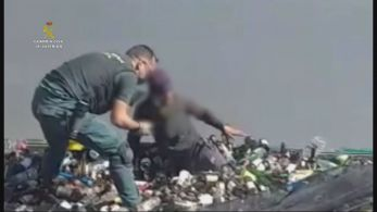 Flagrante aconteceu na última sexta-feira (19) em um contêiner que estava a bordo de um navio, mas as imagens só foram divulgadas nesta segunda (22)